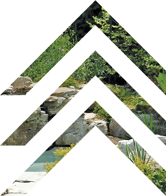 jardins-piniere-image-fleche