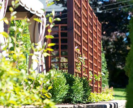 jardins-piniere-photo-amenagement-floral