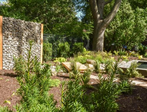 8 questions à se poser avant de réaliser un aménagement paysager.